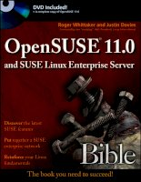 IT training opensuse 11 0 and suse linux enterprise server bible 9780470275870 38082