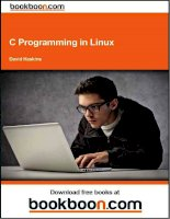 IT training c programming in linux haskins 2009 2