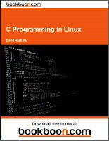 IT training c programming in linux haskins 2009 4