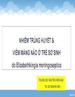 NHIỄM TRÙNG HUYẾT & VIÊM MÀNG NÃO Ở TRẺ SƠ SINH do Elizabethkingia meningoseptica