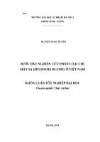 Bước đầu nghiên cứu phân loại chi mật sạ (meliosma blume) ở việt nam