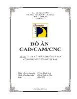 Đồ án Công nghệ CAD/CAM/CNC: Thiết kế phân khuôn và gia công khuôn yên sau xe đạp