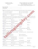 Đề thi thử THPT QG 2020   hóa học   gv lê phạm thành   đề 17   có lời giải