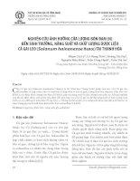 Nghiên cứu ảnh hưởng của lượng bón đạm (N) đến sinh trưởng, năng suất và chất lượng dược liệu cà gai leo (Solanum hainanense Hance) tại Thanh Hóa