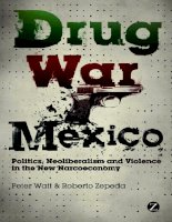 Drug war mexico politics  neoliberalism and violence in the new narcoeconomy