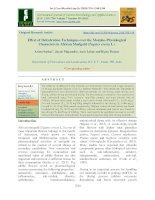 Effect of dehydration techniques over the morpho-physiological characters in African marigold (Tagetes erecta L.)
