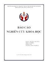 TRANGVIETNGA BAO CAO NGHIEN CUU KHOA HOC khotailieu