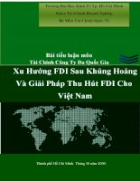 Tiểu luận tài chính quốc tế xu hướng FDI sau khủng hoảng và giải pháp thu hút FDI cho việt nam