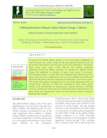 Utilizing bacteria to mitigate global climate change: A review