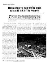 Ngăn chặn và hạn chế lũ quét và sạt lở đất ở Tây Nguyên