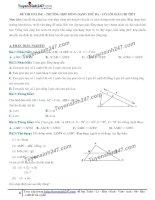Toán lớp 8: 5  thi online   trường hợp đồng dạng thứ ba của tam giác