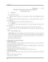 GIÁO ÁN MĨ THUẬT_KẾT NỐI TRI THỨC VỚI CUỘC SỐNG_MẪU NGANG