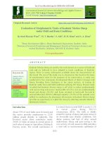 Evaluation of morphometric traits of kashmir Merino sheep under field and farm conditions