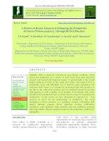 A review on recent advances in enhancing the productivity of Guava (Psidium guajava L.) through hi-tech practices