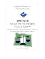 Giáo trình Báo cáo tài chính  Nghề: Kế toán doanh nghiệp  CĐ Kỹ Thuật Công Nghệ Bà RịaVũng Tàu
