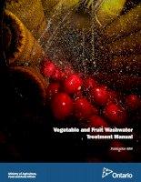 Vegetable and fruit washwater
