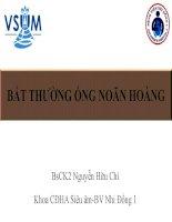 Bài giảng Bất thường ổn noãn hoàng – BS. CK2 Nguyễn Hữu Chí