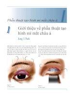 Phẫu thuật tạo hình mí mắt châu á           1 (1)