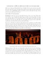 Stonehenge – Bí ẩn lâu đời thách thức các nhà khoa học