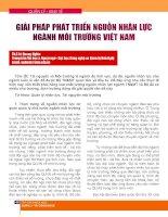 Giải pháp phát triển nguồn nhân lực ngành môi trường Việt Nam