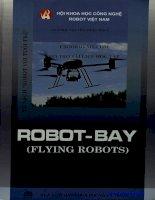 Nghiên cứu động cơ robot bay: Phần 1