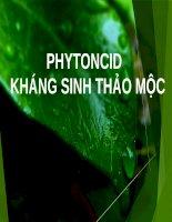 PHYTONCID – kháng sinh thảo dược