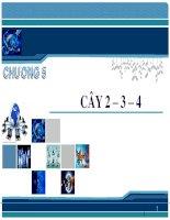 Bài giảng Phân tích thiết kế và giải thuật - Chương 5: Cây 2 – 3 – 4