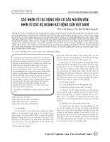 Các nhân tố tác động đến cơ cấu nguồn vốn: Nhìn từ góc độ ngành bất động sản Việt Nam