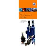skf productos lubricantes y sistemas lr