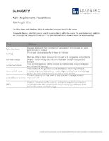 Glossary agile requirements foundations