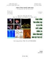 Tăng cường tính chống chịu và cải tiến chất lượng giống lúa bằng công nghệ sinh học thực vật
