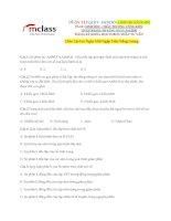 Ôn tập quy luật menđen (1)