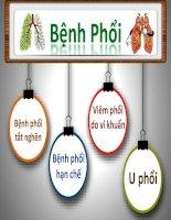 bnhphi gpb 170624072408