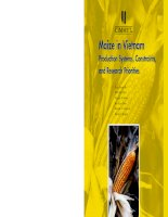 Maize in Vietnam Production Systems, Constraints, and Research Priorities