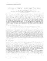 Tổng quan về nghiên cứu kế toán xã hội và môi trường